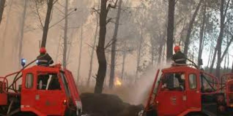 Protection de la forêt contre les incendies